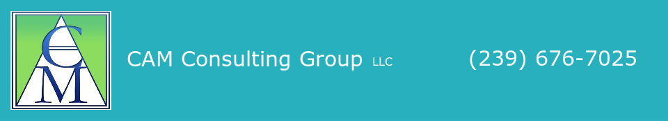 CAM Consulting Group LLC